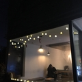 Restaurant Review Picture