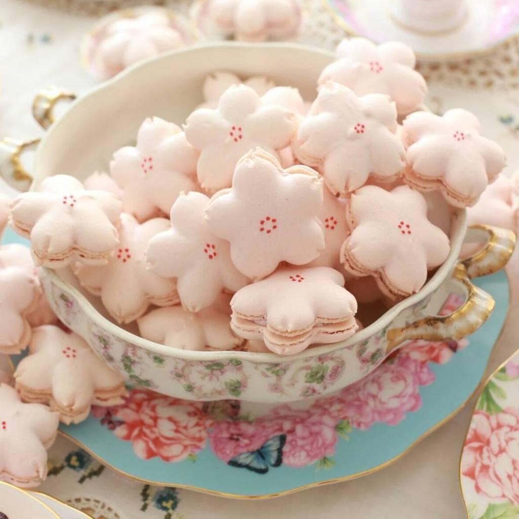 전국 벚꽃디저트 맛집 사진